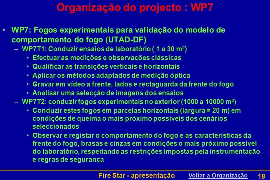 Organização do projecto : WP7