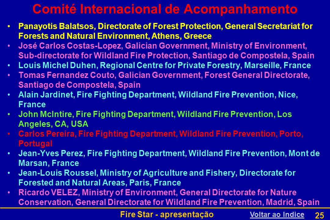 Comité Internacional de Acompanhamento