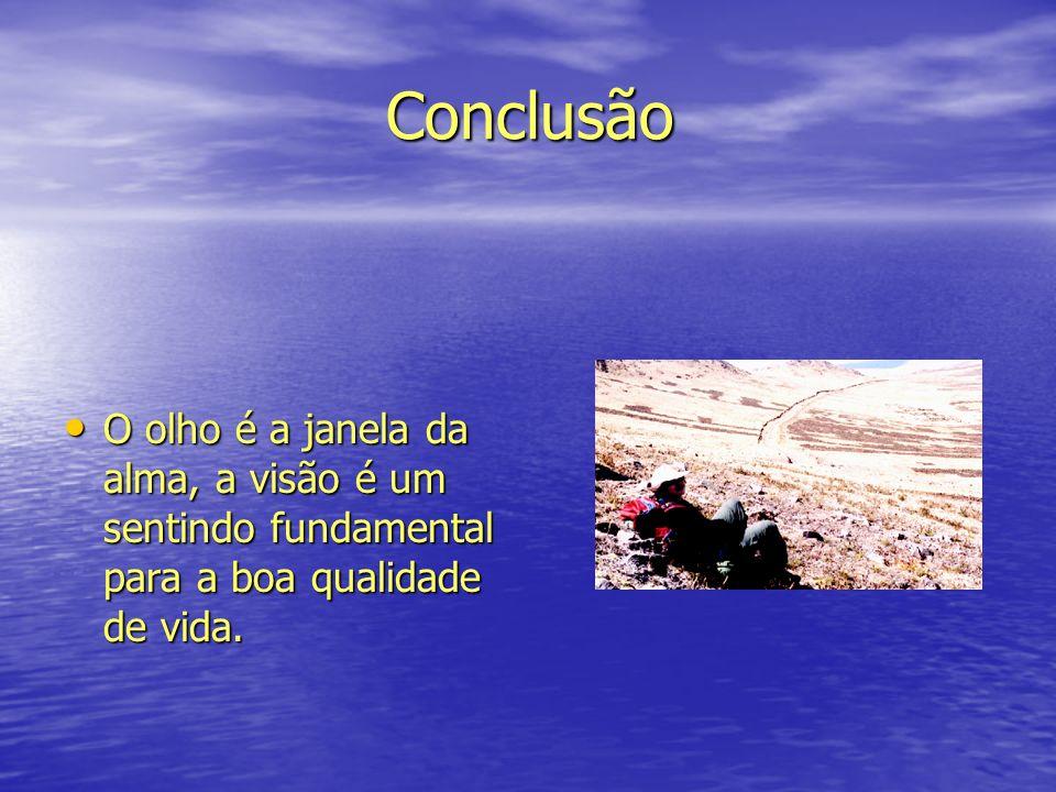 Conclusão O olho é a janela da alma, a visão é um sentindo fundamental para a boa qualidade de vida.