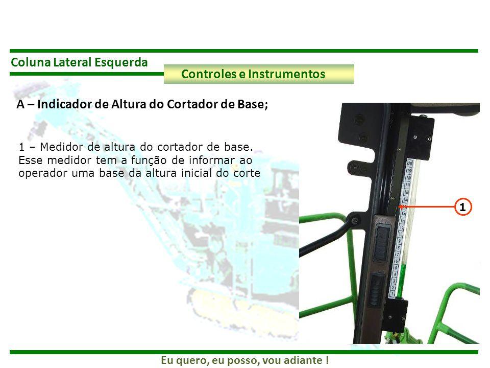 Coluna Lateral Esquerda Controles e Instrumentos