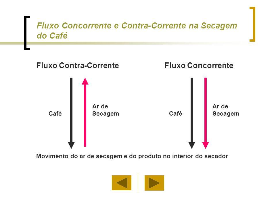 Fluxo Concorrente e Contra-Corrente na Secagem do Café
