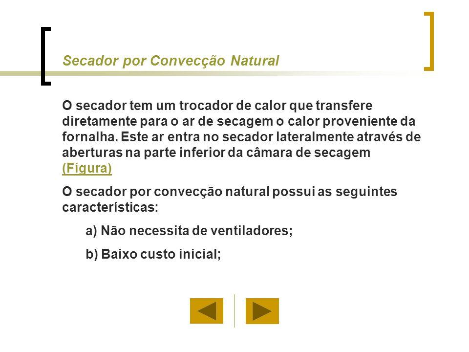 Secador por Convecção Natural