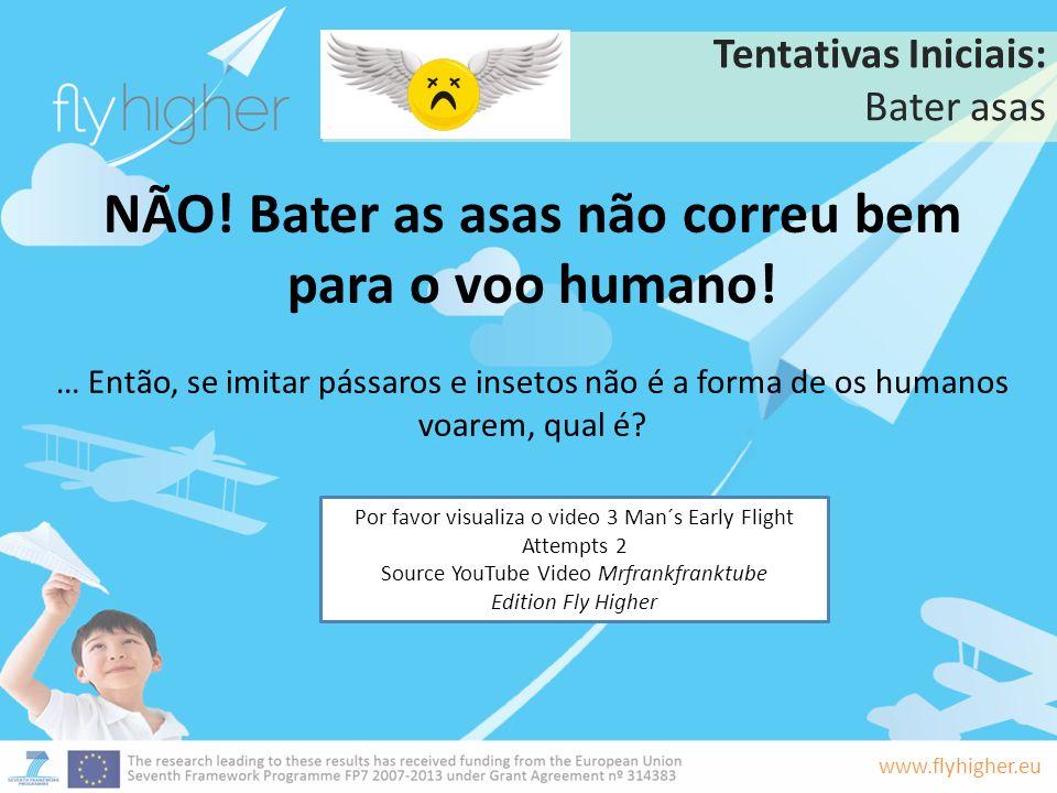NÃO! Bater as asas não correu bem para o voo humano!