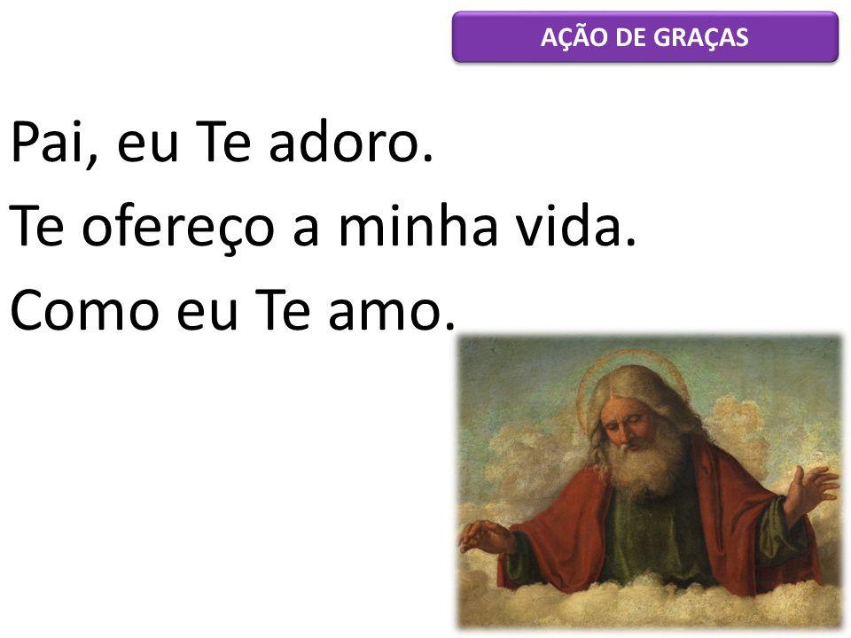 Pai, eu Te adoro. Te ofereço a minha vida. Como eu Te amo.