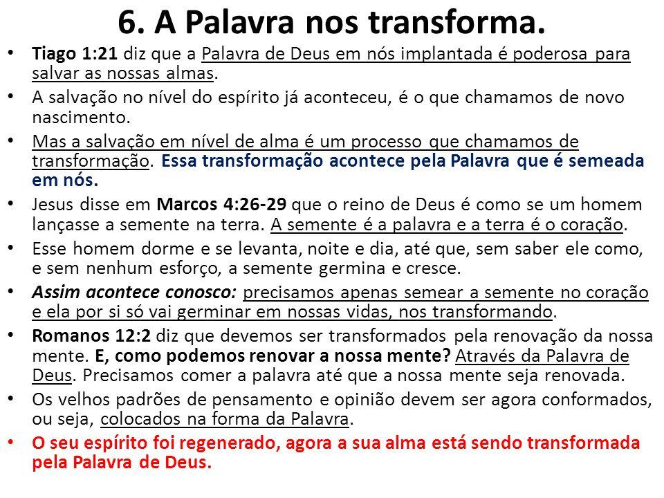 6. A Palavra nos transforma.