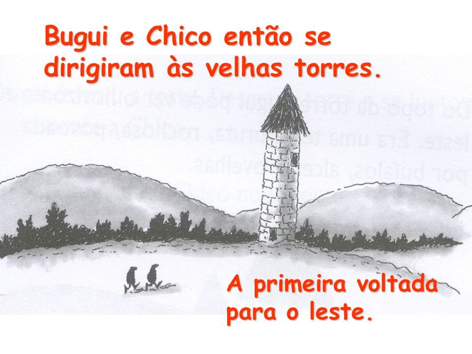 Bugui e Chico então se dirigiram às velhas torres.