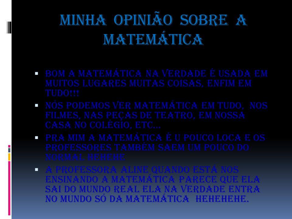 Minha opinião sobre a matemática