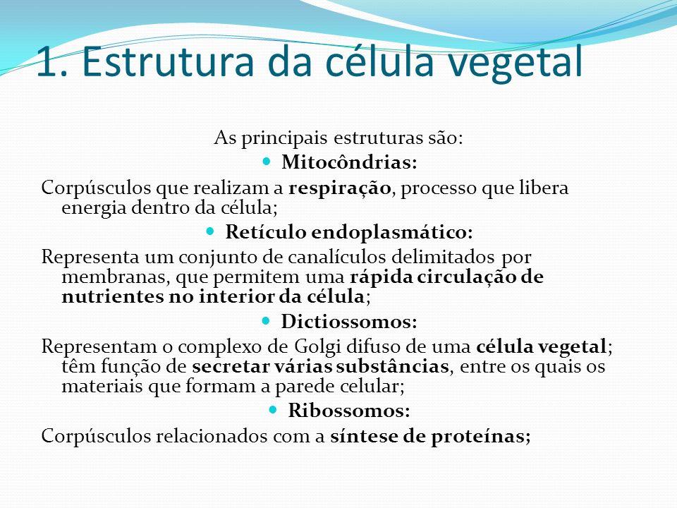 1. Estrutura da célula vegetal