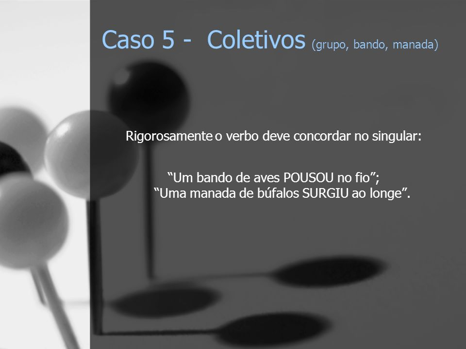 Caso 5 - Coletivos (grupo, bando, manada)