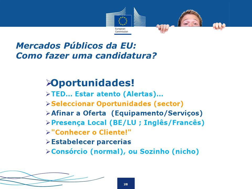 Mercados Públicos da EU: Como fazer uma candidatura