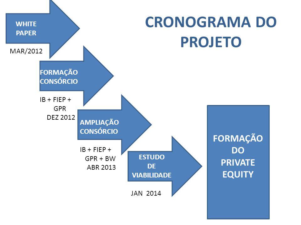CRONOGRAMA DO PROJETO FORMAÇÃO DO PRIVATE EQUITY WHITE PAPER MAR/2012