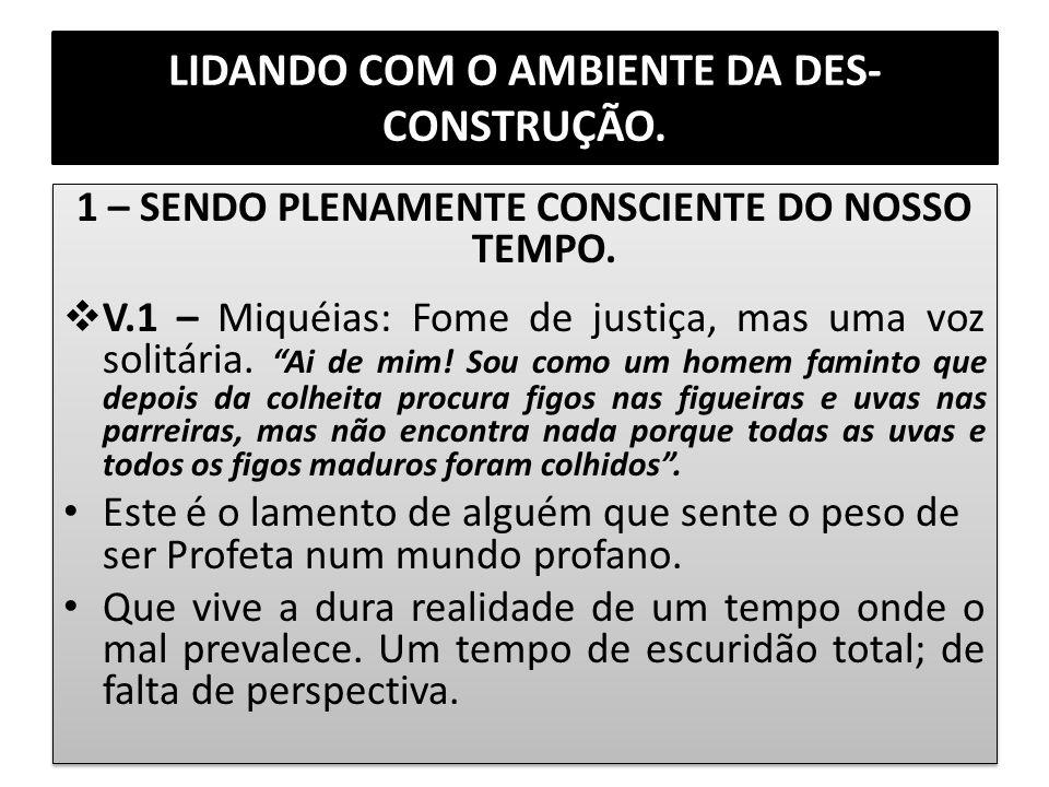 LIDANDO COM O AMBIENTE DA DES-CONSTRUÇÃO.