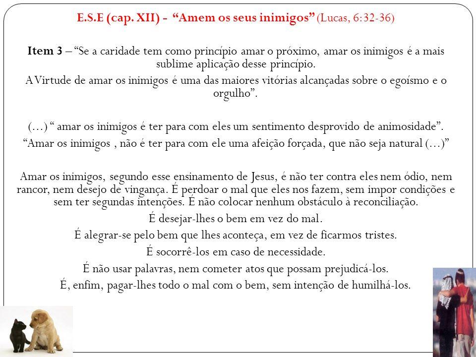 E.S.E (cap.