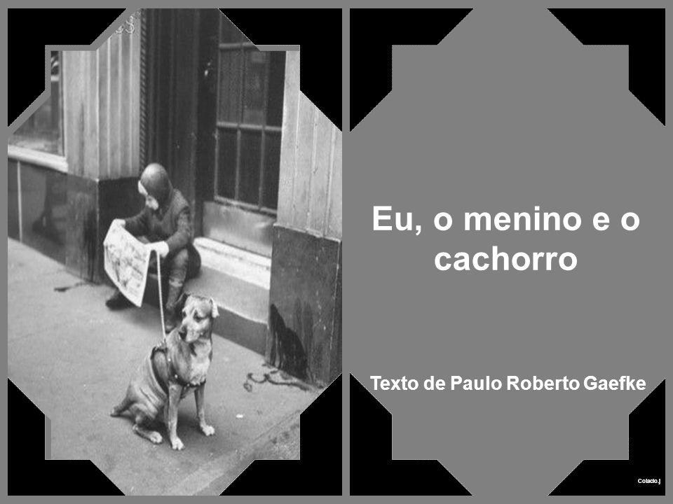 Eu, o menino e o cachorro Texto de Paulo Roberto Gaefke