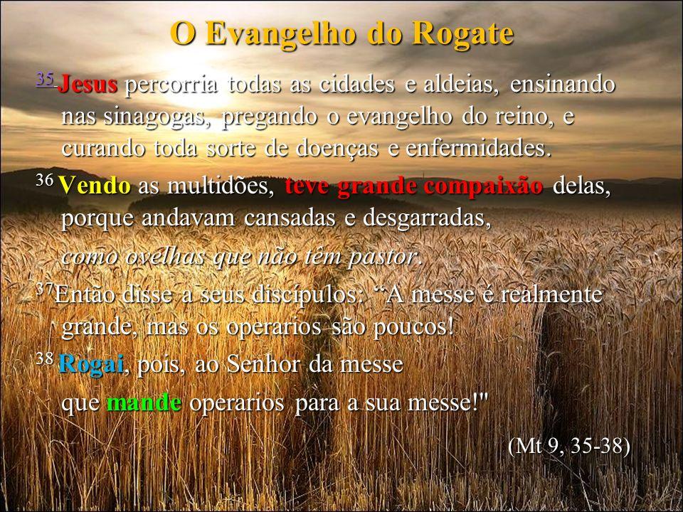 O Evangelho do Rogate