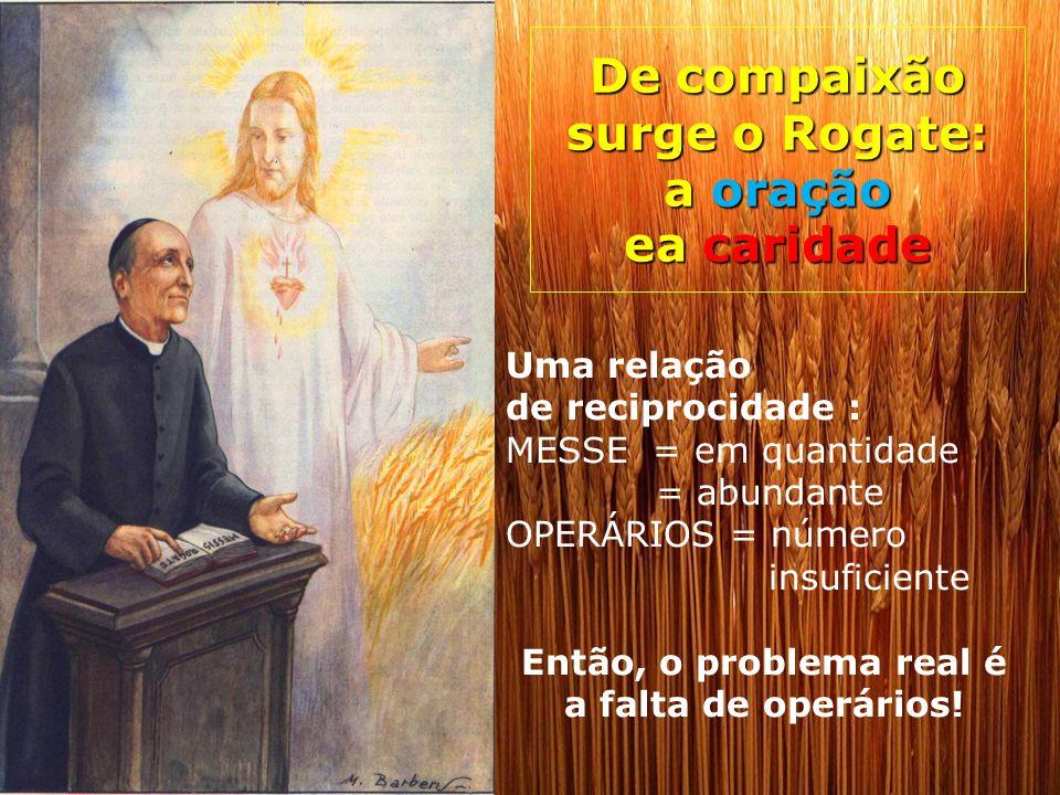 De compaixão surge o Rogate: a oração ea caridade