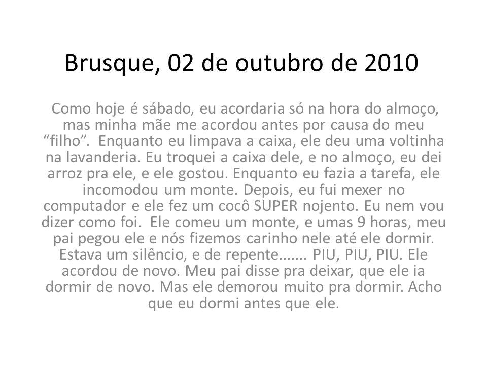 Brusque, 02 de outubro de 2010
