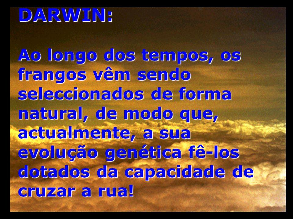 DARWIN:
