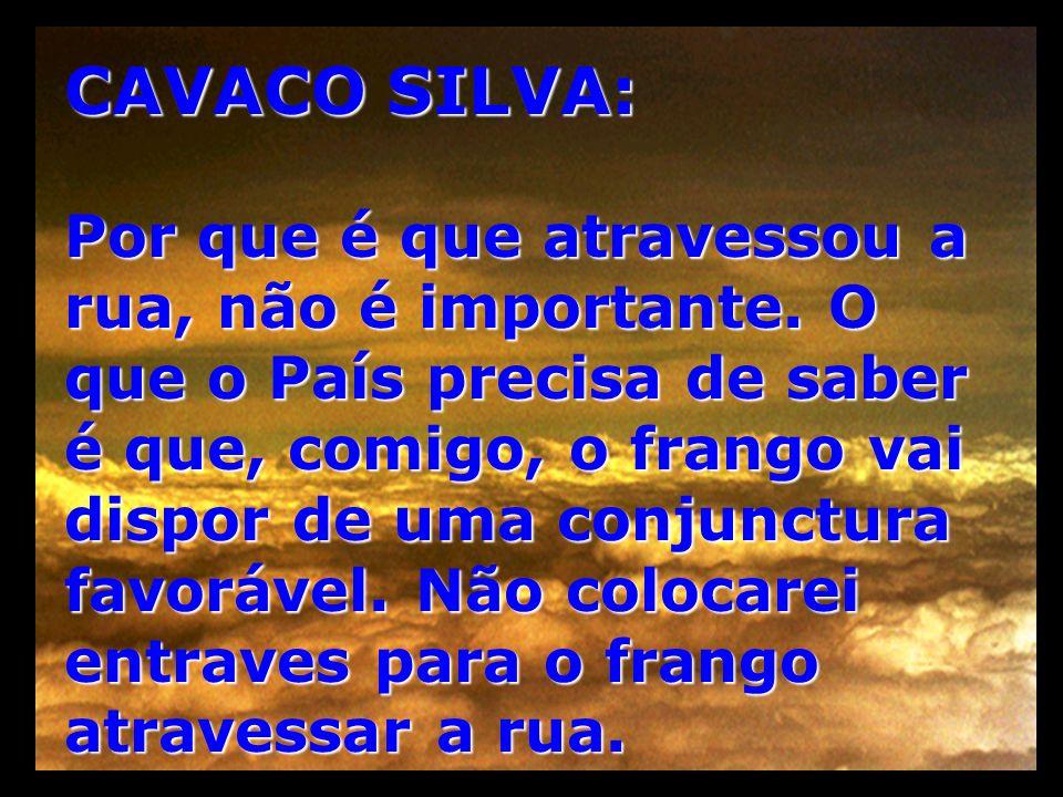 CAVACO SILVA: