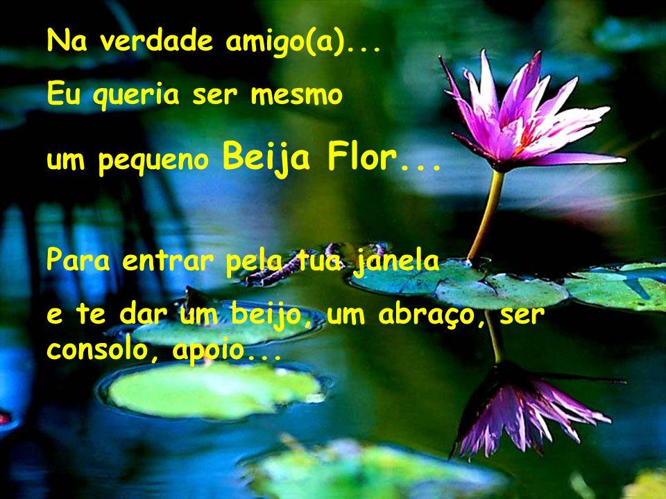 Na verdade amigo(a)... Eu queria ser mesmo. um pequeno Beija Flor... Para entrar pela tua janela.