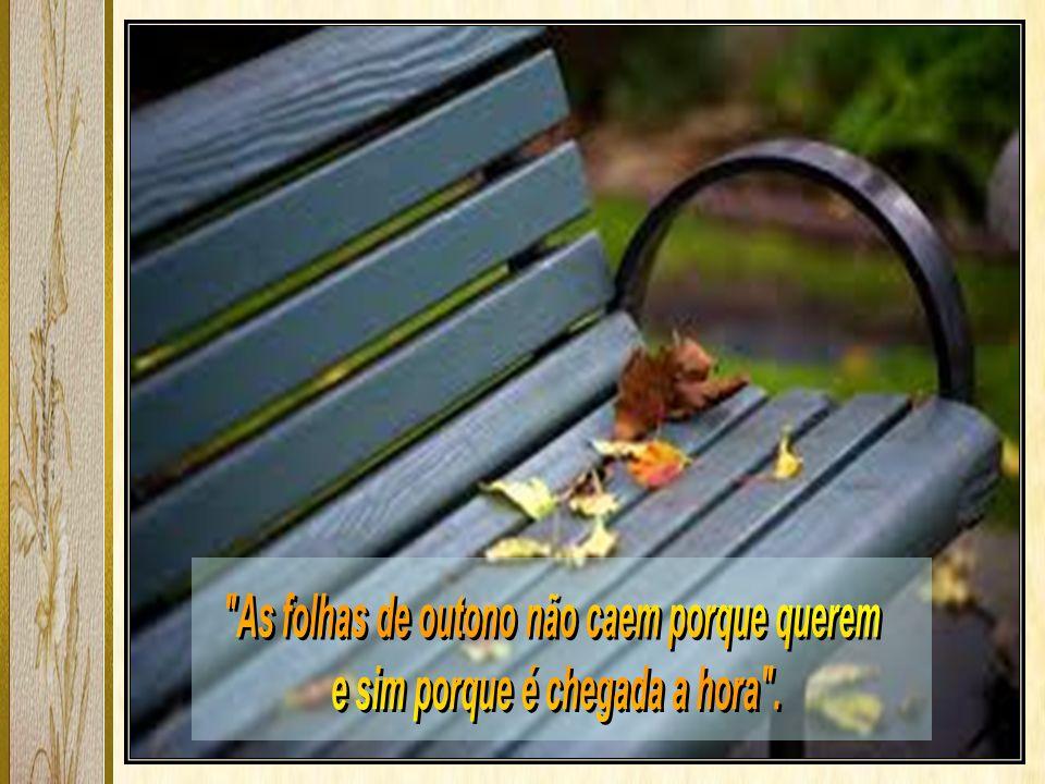As folhas de outono não caem porque querem
