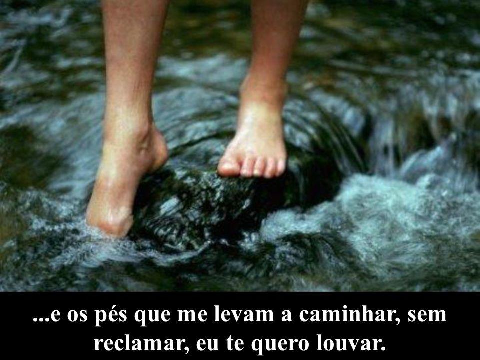 ...e os pés que me levam a caminhar, sem reclamar, eu te quero louvar.