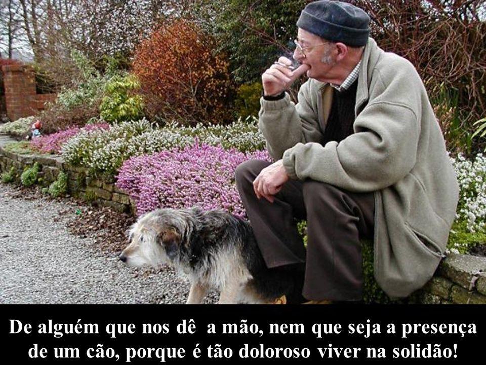 De alguém que nos dê a mão, nem que seja a presença de um cão, porque é tão doloroso viver na solidão!