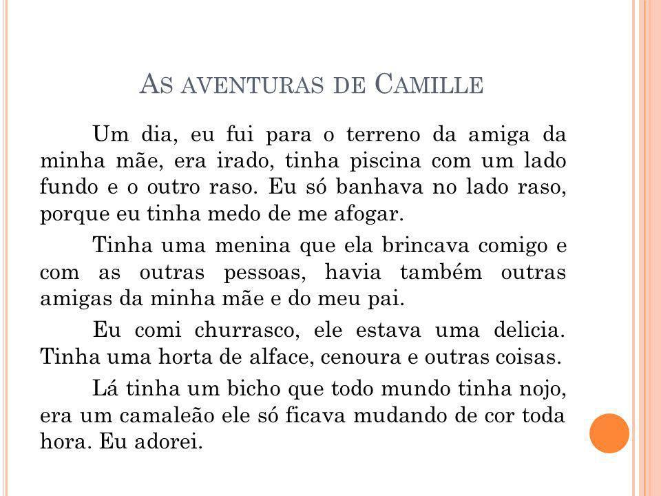 As aventuras de Camille