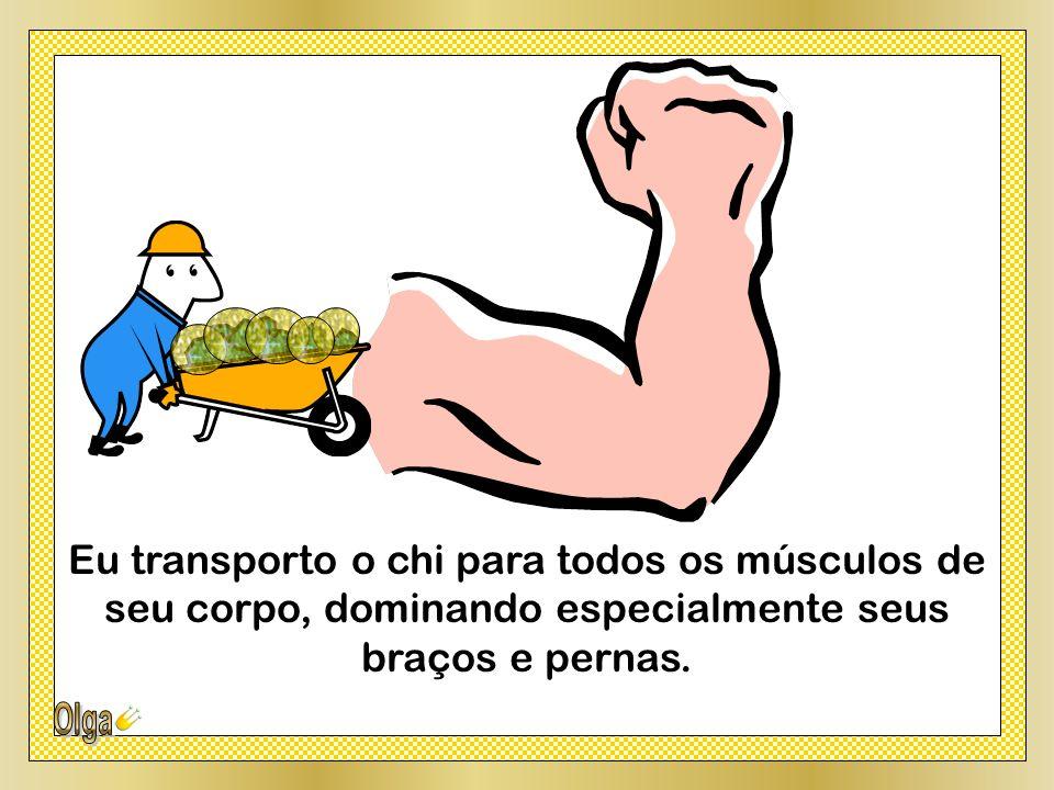 Eu transporto o chi para todos os músculos de seu corpo, dominando especialmente seus braços e pernas.