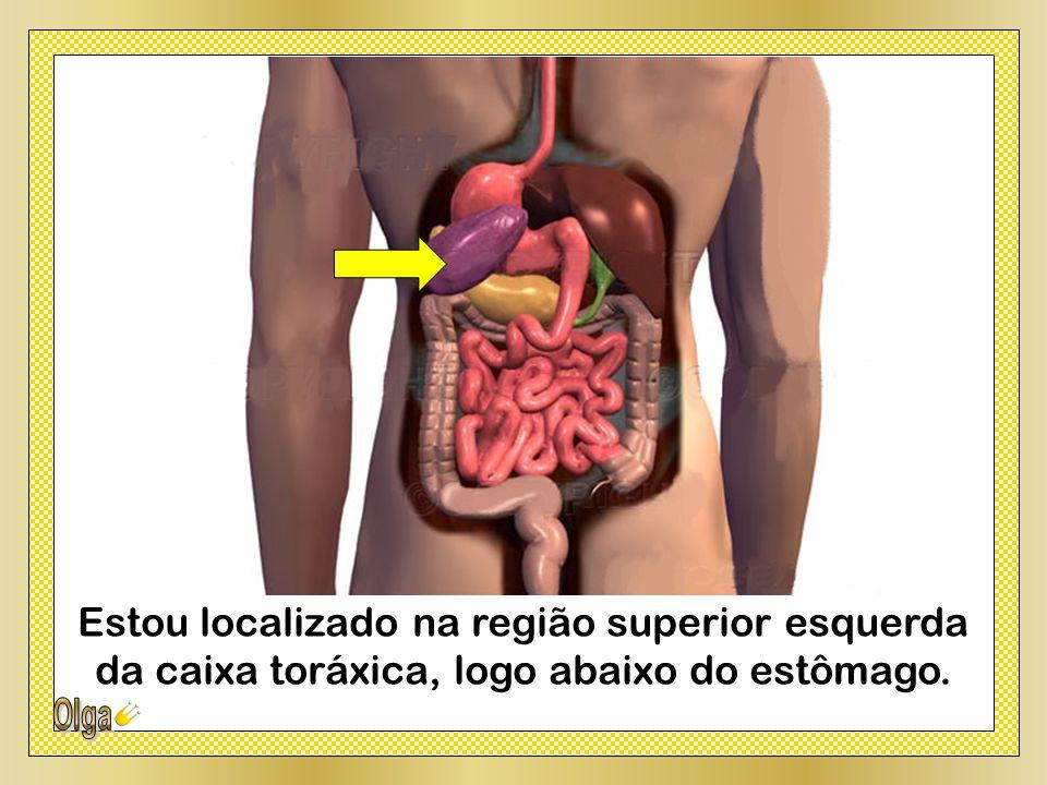 Estou localizado na região superior esquerda da caixa toráxica, logo abaixo do estômago.