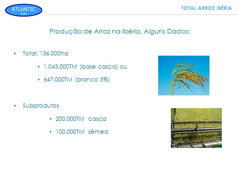Produção de Arroz na Ibéria, Alguns Dados: