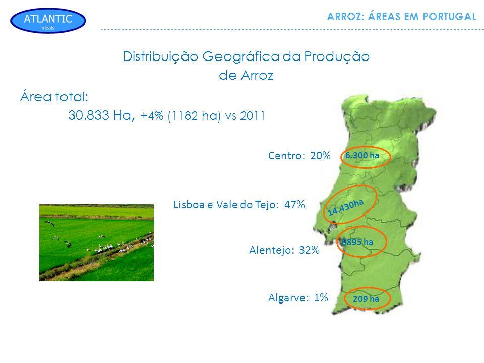 Distribuição Geográfica da Produção de Arroz