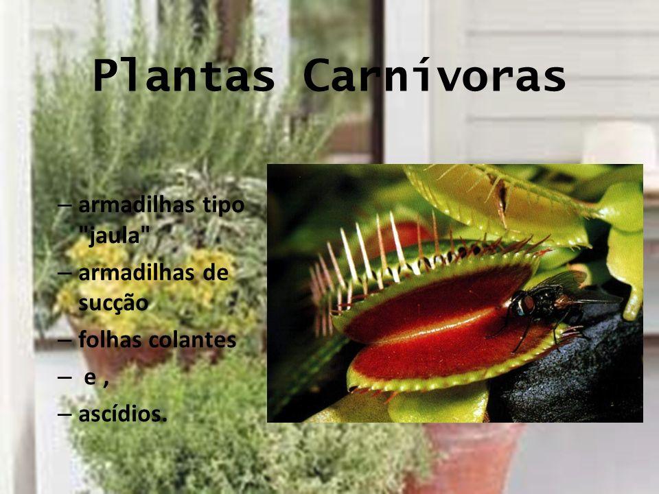 Plantas Carnívoras armadilhas tipo jaula armadilhas de sucção