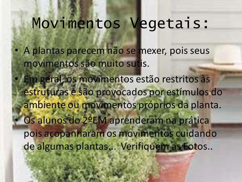 Movimentos Vegetais: A plantas parecem não se mexer, pois seus movimentos são muito sutis.
