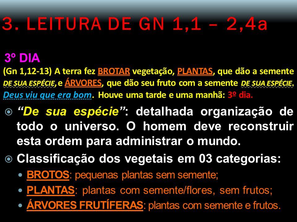 3. LEITURA DE GN 1,1 – 2,4a 3º DIA.