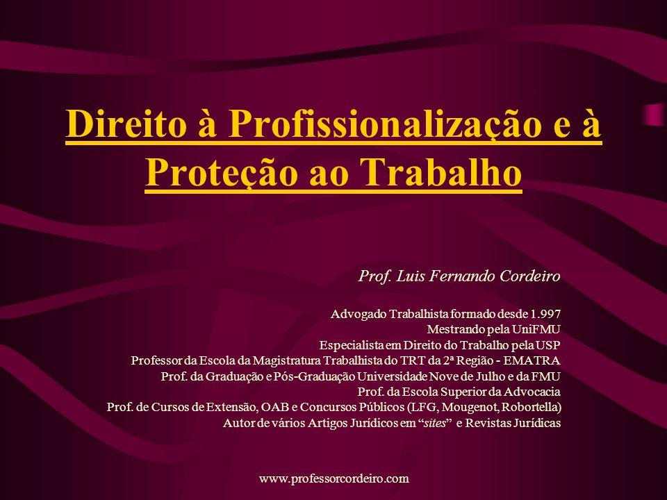 Direito à Profissionalização e à Proteção ao Trabalho