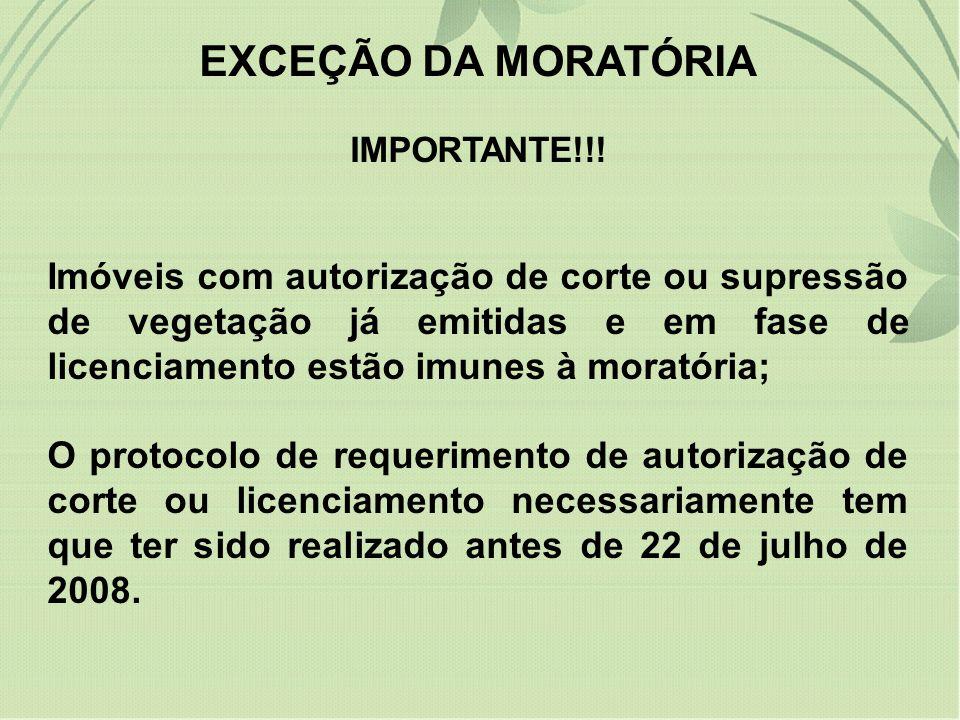 EXCEÇÃO DA MORATÓRIA IMPORTANTE!!!