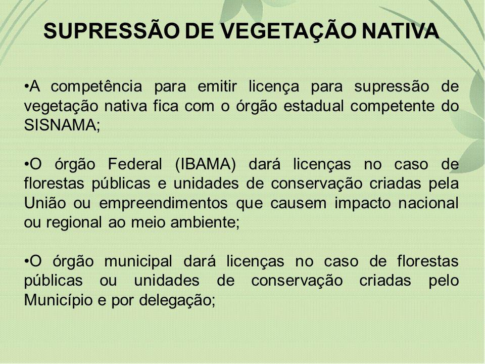 SUPRESSÃO DE VEGETAÇÃO NATIVA