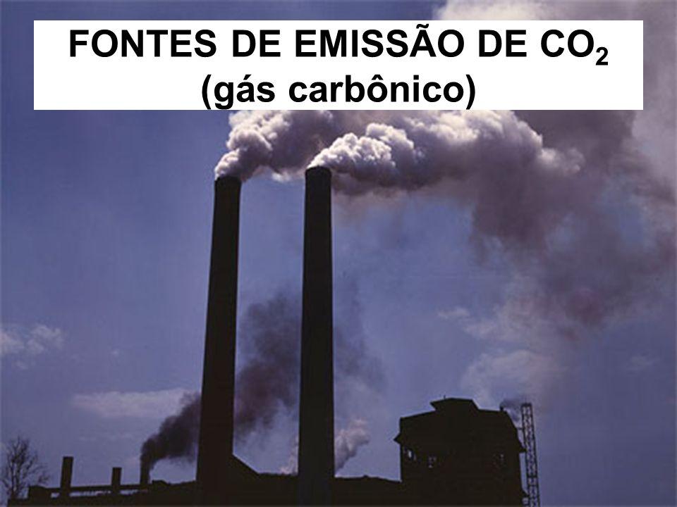 FONTES DE EMISSÃO DE CO2 (gás carbônico)