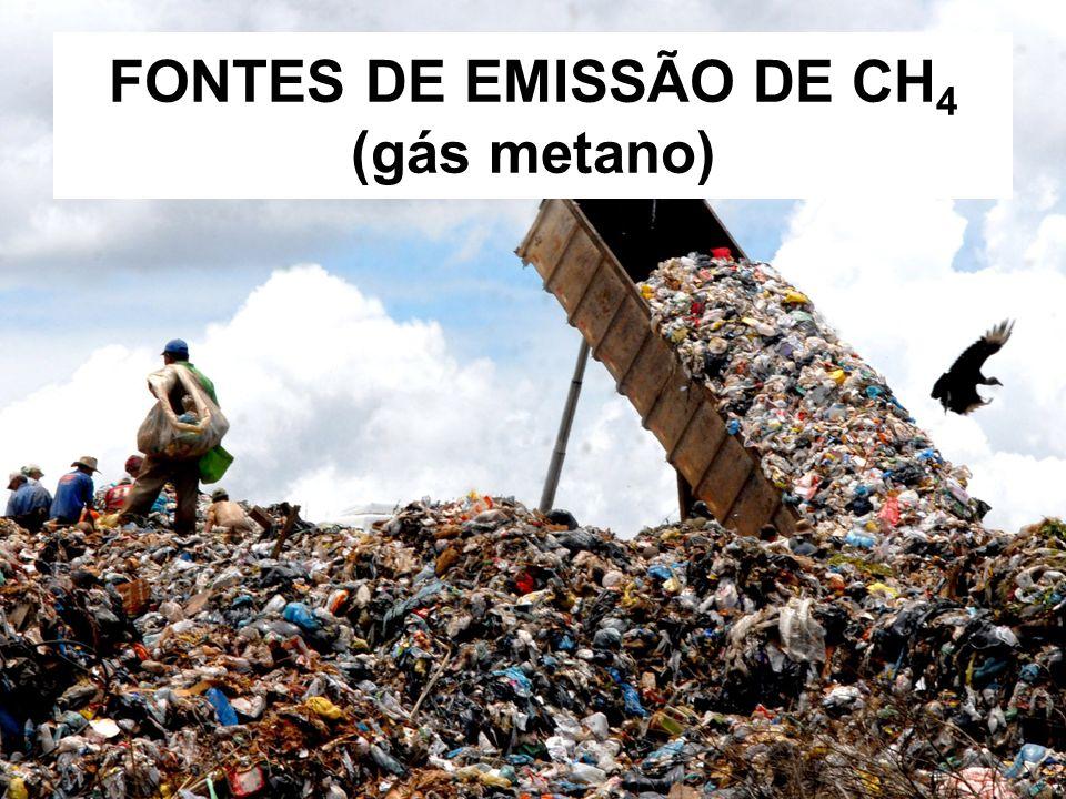 FONTES DE EMISSÃO DE CH4 (gás metano)