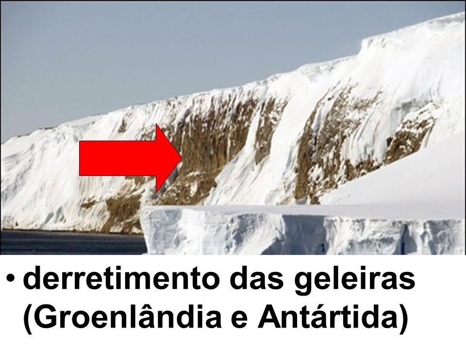 derretimento das geleiras (Groenlândia e Antártida)
