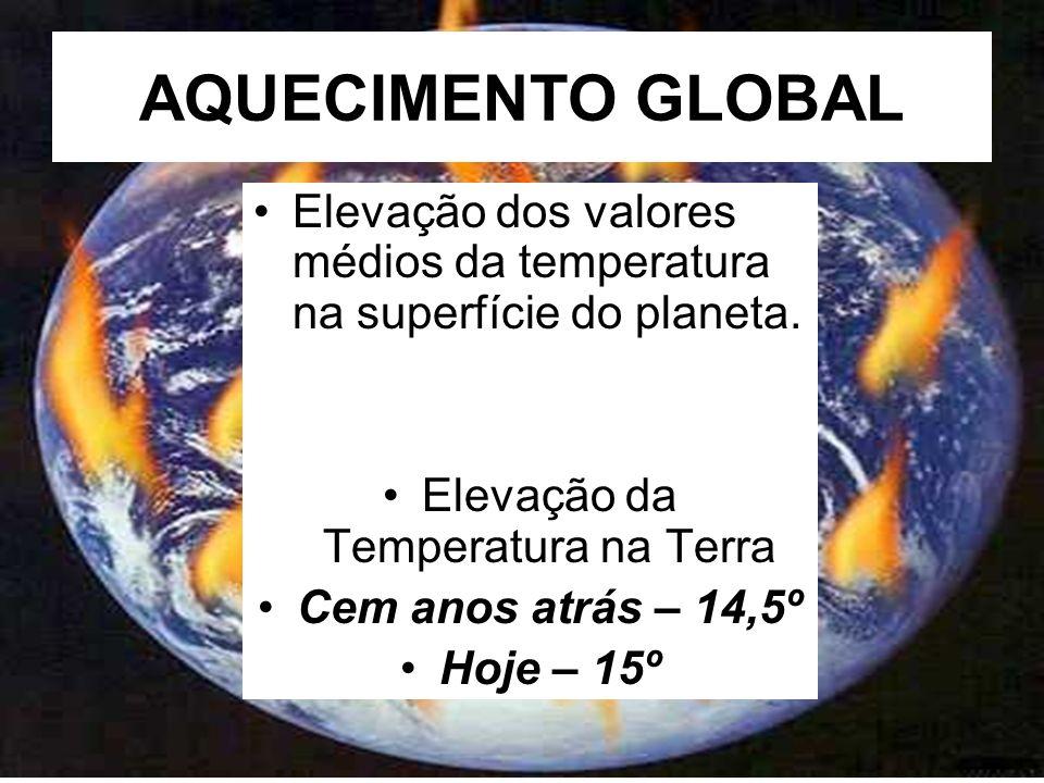 Elevação da Temperatura na Terra