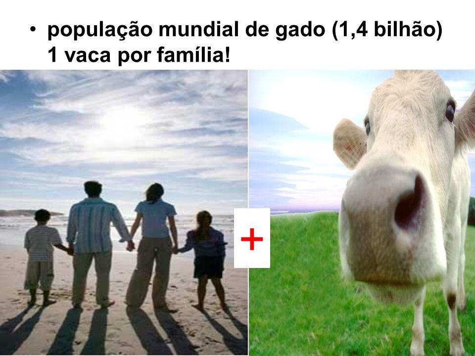 população mundial de gado (1,4 bilhão) 1 vaca por família!