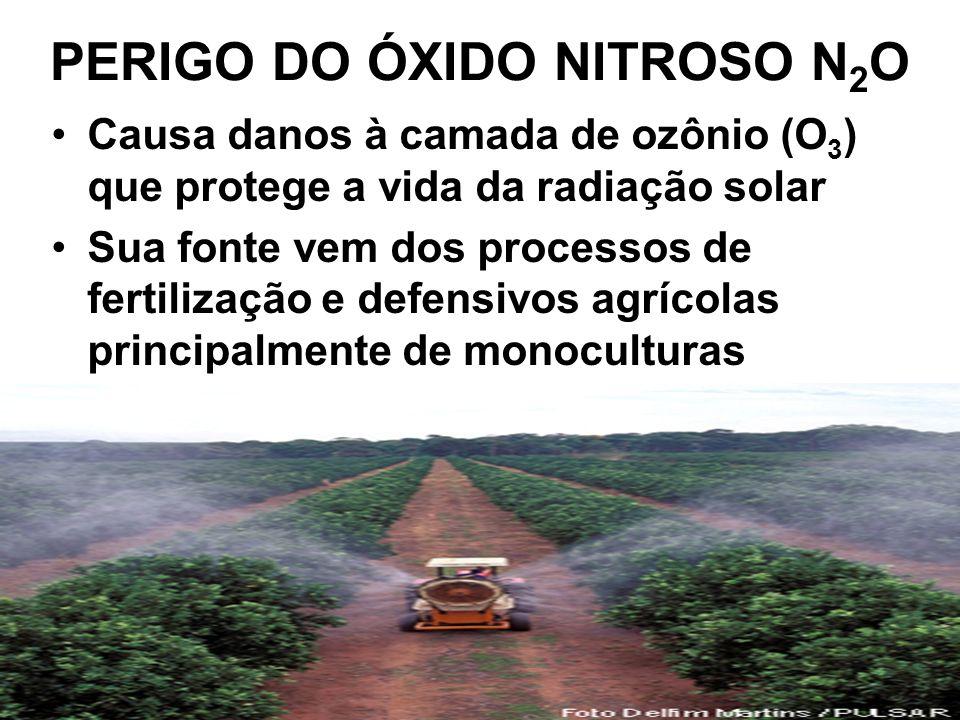 PERIGO DO ÓXIDO NITROSO N2O