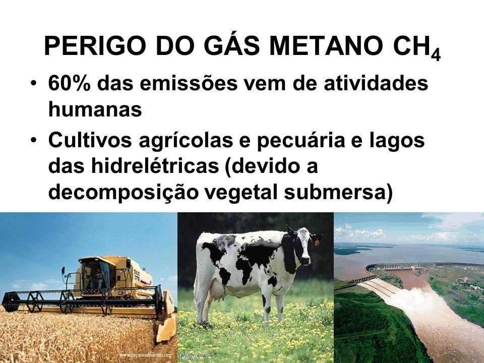 PERIGO DO GÁS METANO CH4 60% das emissões vem de atividades humanas