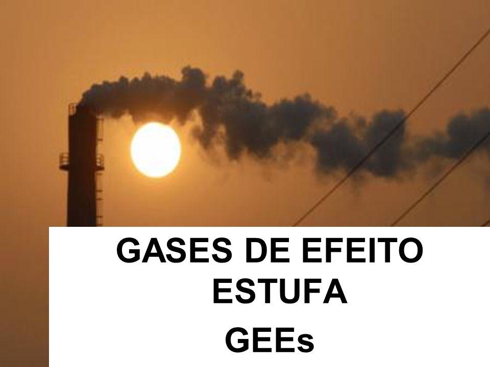 GASES DE EFEITO ESTUFA GEEs