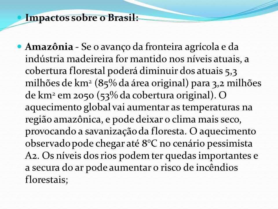 Impactos sobre o Brasil: