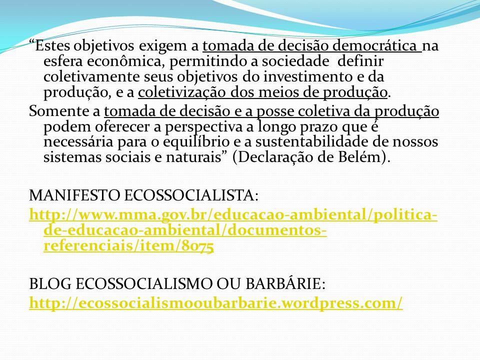 Estes objetivos exigem a tomada de decisão democrática na esfera econômica, permitindo a sociedade definir coletivamente seus objetivos do investimento e da produção, e a coletivização dos meios de produção.