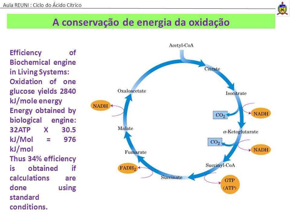 A conservação de energia da oxidação