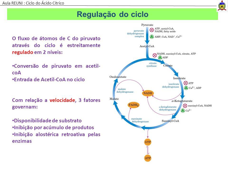Aula REUNI : Ciclo do Ácido Cítrico